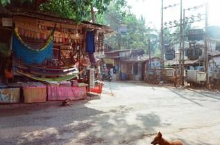 Souvenirladen und Hunde in Palolem