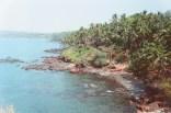 Steilküste mit Palmen beim Cabo de Rama Fort