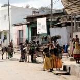 Harar MArkt Esel und Brennholz