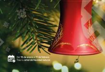 """Invita SEDEMA a sumarse a la campaña """"Recicla tu Navidad"""""""