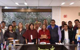 Necesaria la coordinación entre grupos indígenas y autoridades para lograr resultados: Cristina Alarcón