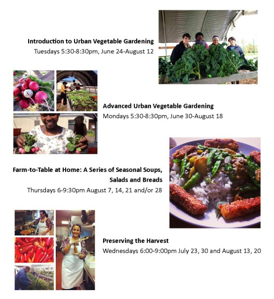 KCC Urban Farm Summer '14 classes