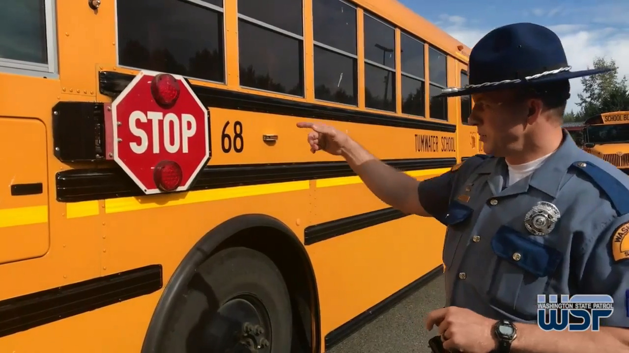 hight resolution of road rules when to stop and not stop for a school bus the bellingham herald