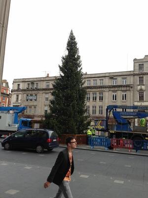 OConnell Street Christmas Tree Dublin At Christmas