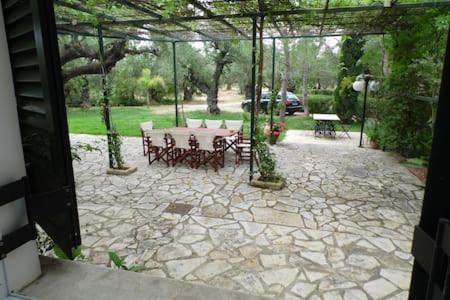 theni olive grove villa kato