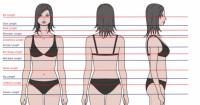 Guys: which hair length do you find most attractive on a ...