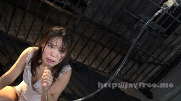 [HD][NEOB-008] 無双アナル便器女 ガチ小便・ガチごっくん・ガチぶっかけ大量64発 持田栞里