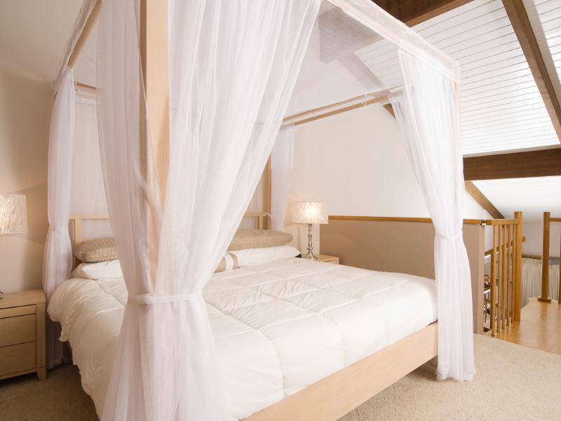 Bed Canopy For Adults  Bangdodo