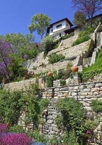 Slope Landscaping Ideas | LoveToKnow