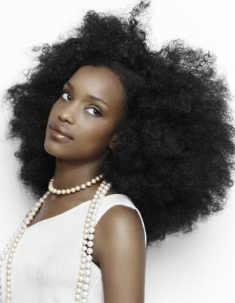 Gallery Of Natural Black Hair Styles