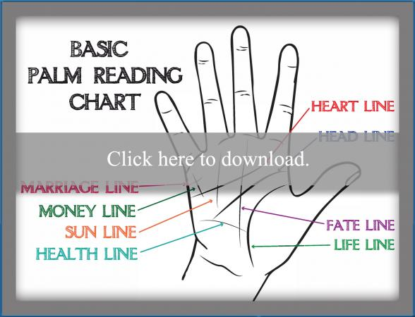 palmistry diagram marriage line smeg cooker wiring palm reading hand chart lovetoknow