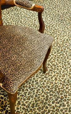 Leopard Print Room Dcor Ideas  LoveToKnow