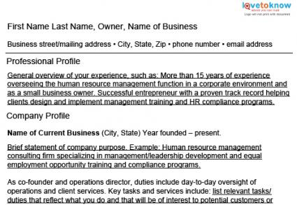 sample business owner resumes - Sample Business Owner Resume