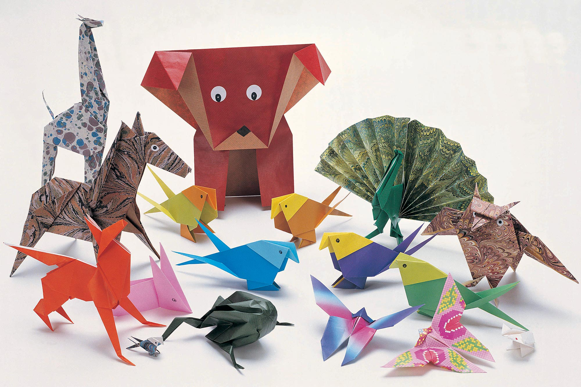Simple Origami Animals Instructions Jadwal Bus