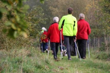 Group Elderly Activities  LoveToKnow