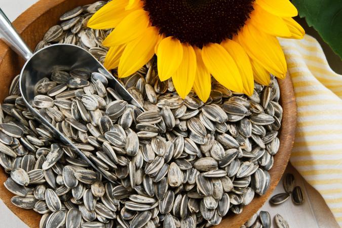 Image result for sunflower seeds
