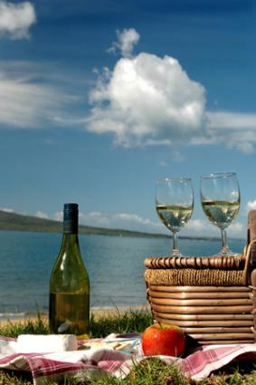 Best Wine Recommendations for Perfect Picnics  LoveToKnow