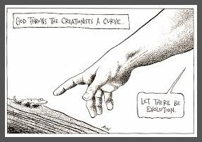 Newspaper articles on evolution and creationism essay