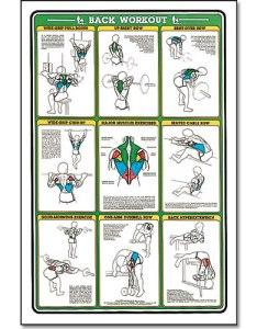 Workout exercises to strengthen lower back also rh workoutexerciseszukishibaspot