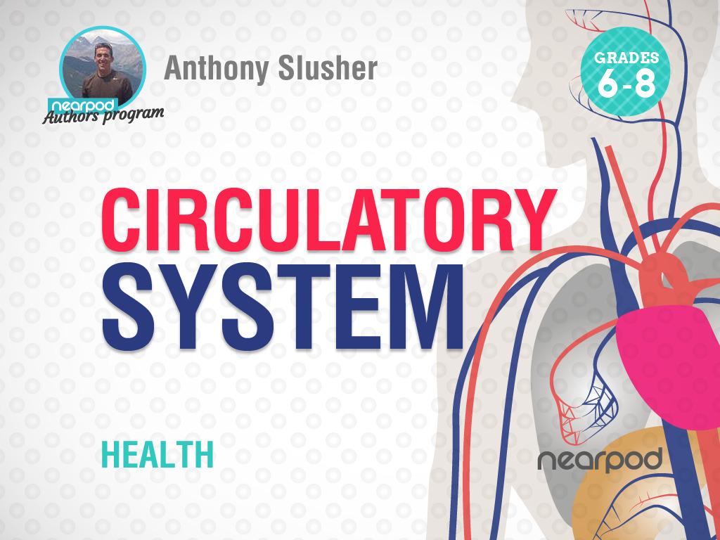 Circulatory System [ 768 x 1024 Pixel ]