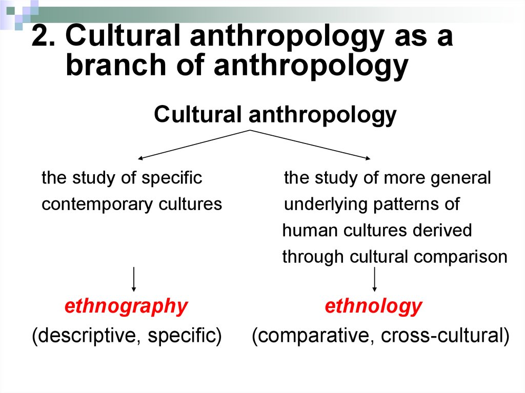 Cultural anthropology. Linguistic support for