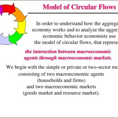 Circular Flow Diagram With Government Sector Bones Vertebrae Labeled Model Explained Photos Old Pictures Of