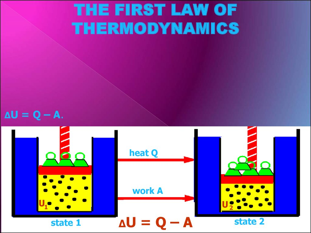 Thermodynamics Of Biological Systems