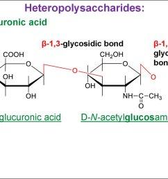 heteropolysaccharides hyaluronic acid 1 3 glycosidic bond d glucuronic acid 1 4glycosidic bond d n acetylglucosamine [ 1024 x 768 Pixel ]
