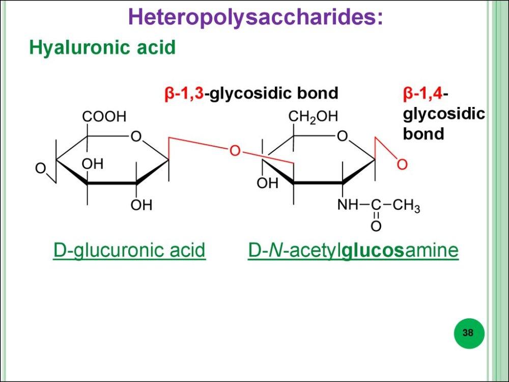 medium resolution of heteropolysaccharides hyaluronic acid 1 3 glycosidic bond d glucuronic acid 1 4glycosidic bond d n acetylglucosamine