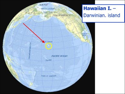 Island biogeography. Diversity on regional scale ...