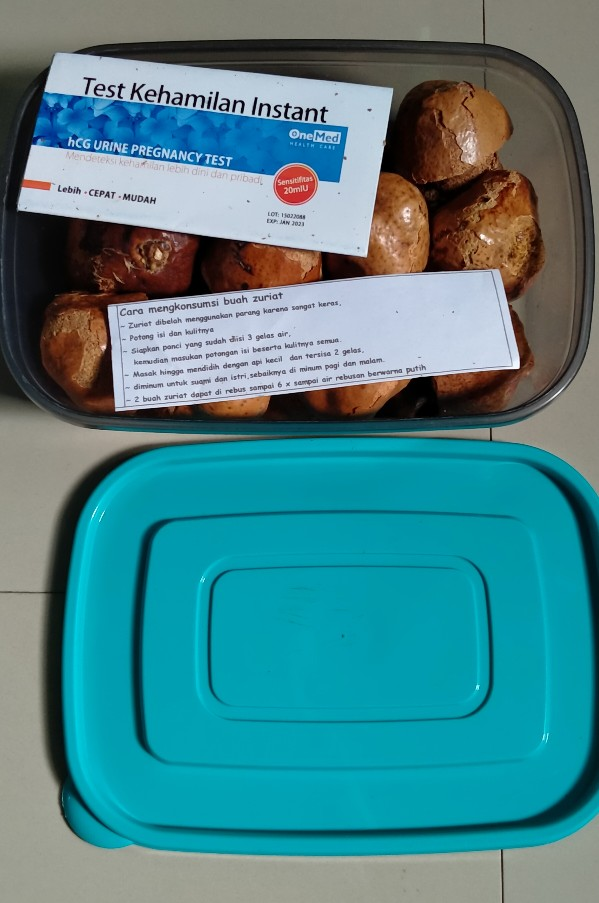 Cara Memasak Buah Zuriat : memasak, zuriat, Zuriat, Promil, Sudah, Dibelah, Rebus, Satuan, Shopee, Indonesia