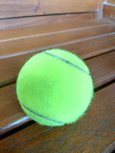 Bola Tenis Lapangan : tenis, lapangan, Tenis, Bekas, Second, Shopee, Indonesia