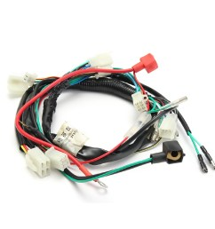 complete electric start engine wiring harness loom for quad bike atv dune buggy shopee malaysia [ 1024 x 1024 Pixel ]