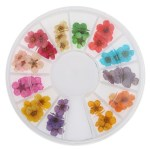 12 Colors 3d Dried Dry Flower Nail Art Wheel Decoration Manicure Diy Design Shopee Philippines