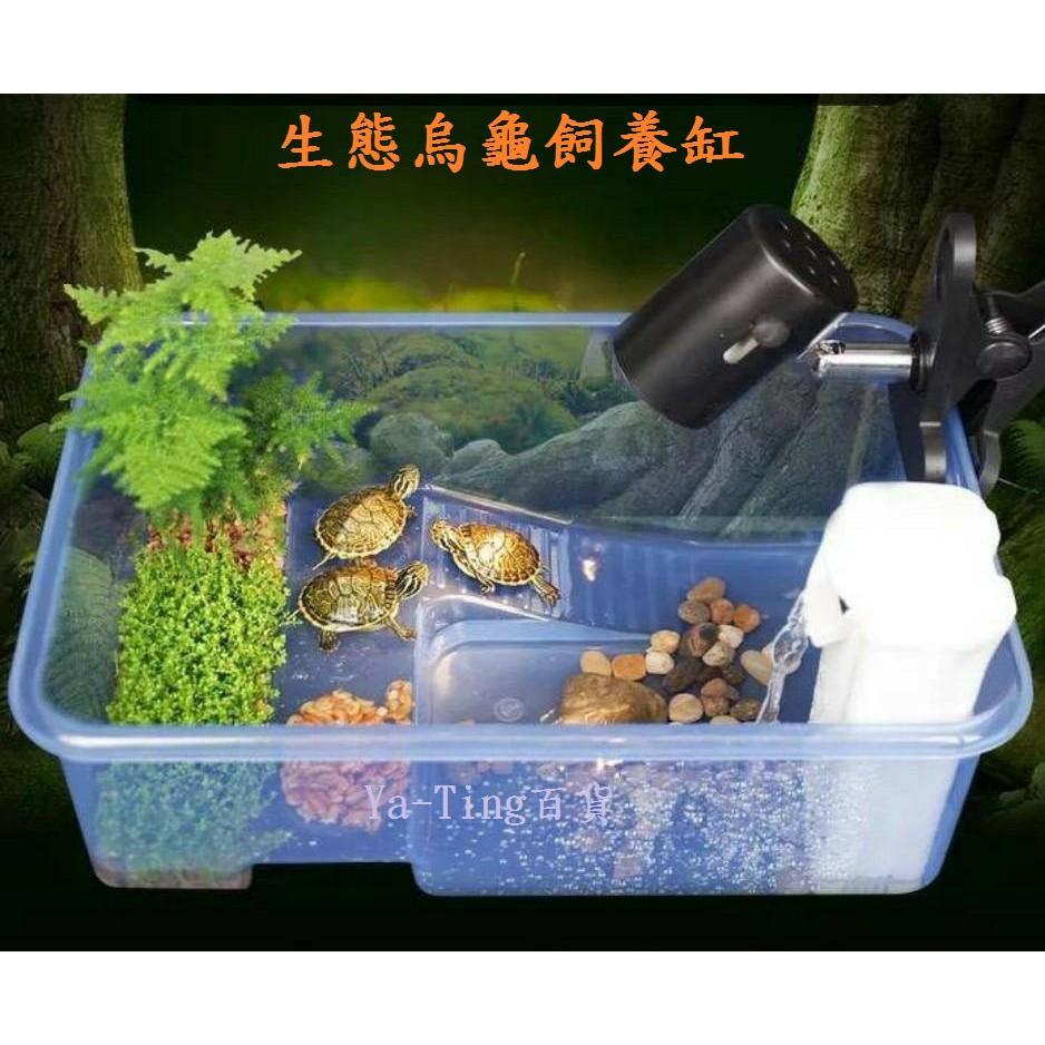 烏龜 生態 飼養盒【裸缸】水陸兩用 烏龜缸 烏龜盒 生態缸 澤龜 婷婷百貨   蝦皮購物
