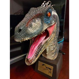 侏儸紀公園 侏儸紀世界 JURASSIC VELOCIRAPTOR 白堊紀 伶盜龍 迅猛龍 小藍 BLUE 雕像 胸像   蝦皮購物