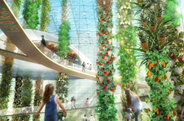 Foodista  Aquaponic Urban Food Jungle is a ProduceFilled Utopia