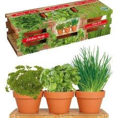 Kitchen Herb Kit Sink Brands Cottage Farms Direct Live Herbs Trio Zulily