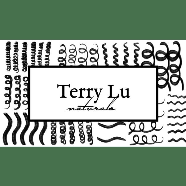 TerryLu-Web