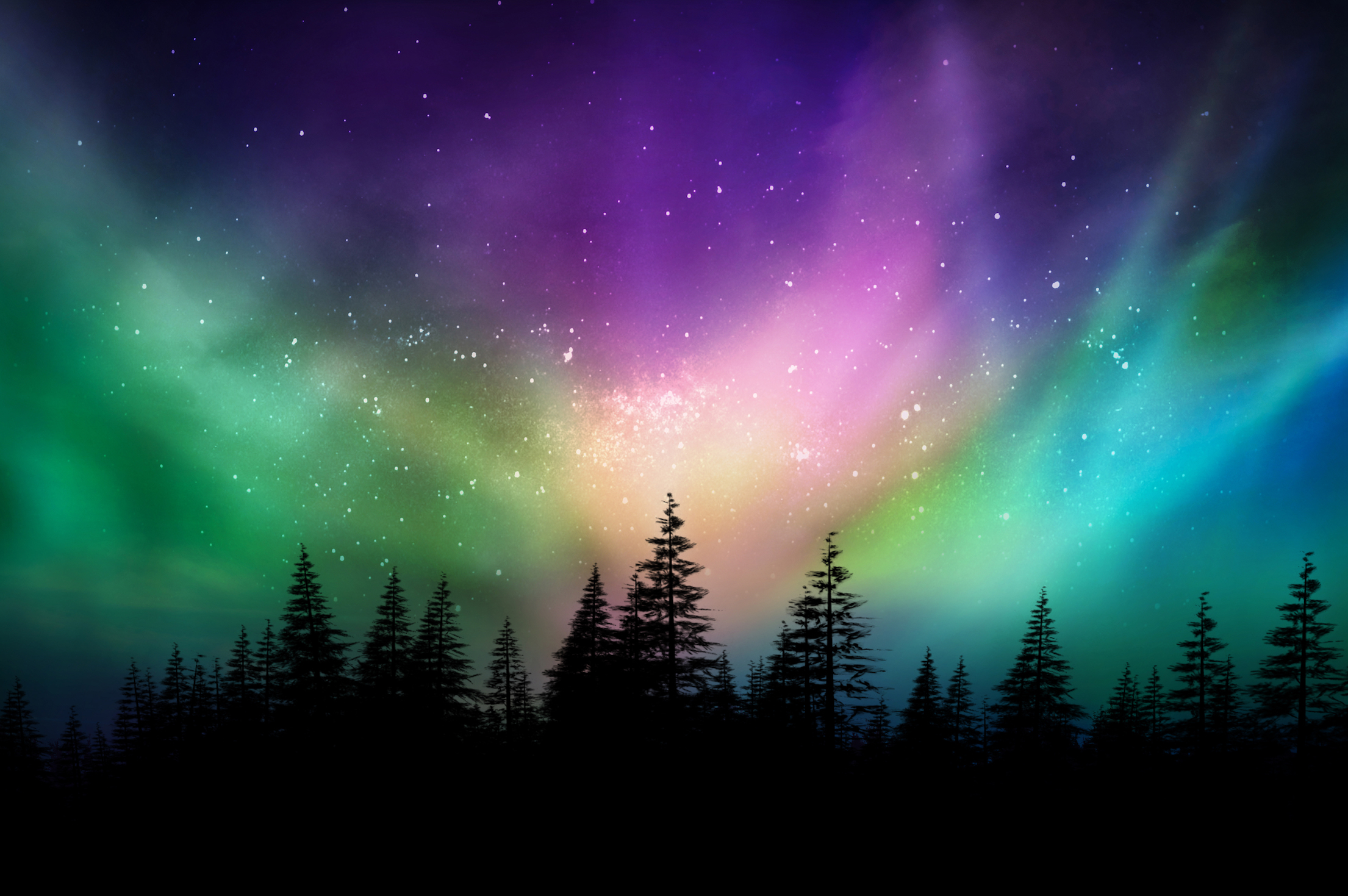 the northern lights have