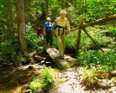 Bridge 4 - Twin Falls Trail