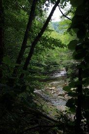 East Fork Pigeon River