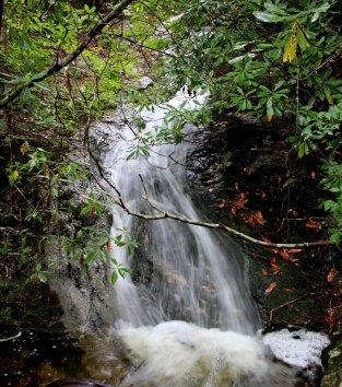 Falls on Flat Laurel Creek