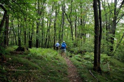 Trail between Graveyard & Skinny