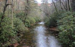South Fork Mills River