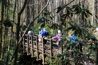 Crossing the East Fork Chattooga River