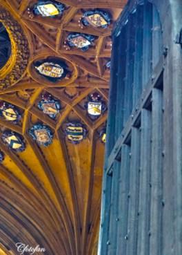 2013-08-16 Oxford 044