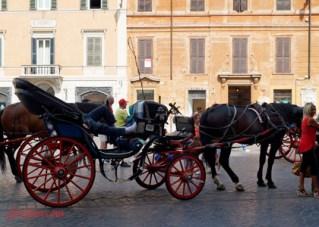 2013-08-21 Roma 229