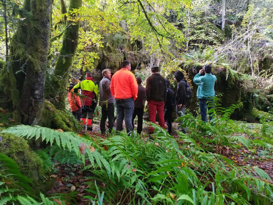 BP Responsable de chantier forestier meymac voyage d'etude cantal avenir forêt