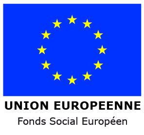 logo UE FSE